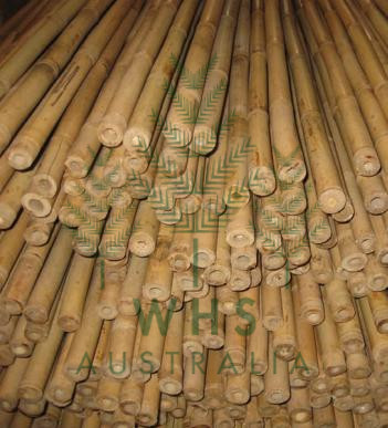 Bamboo Sticks and Garden Stakes